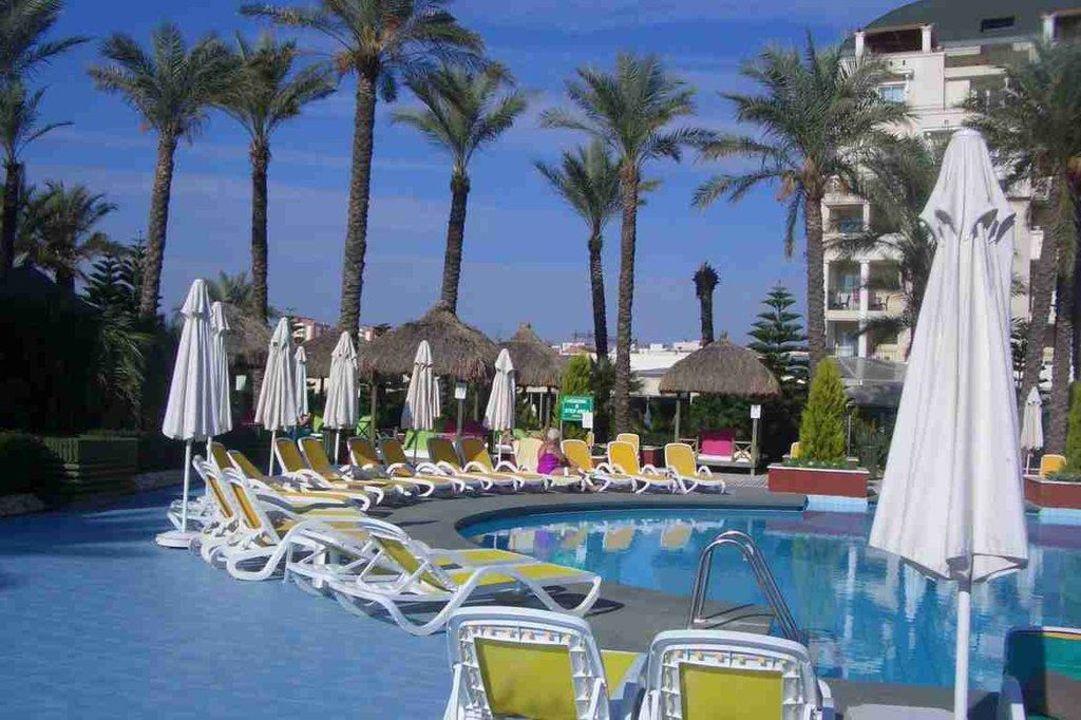 Teil vom Pool mit Liegen Hotel Delphin Diva
