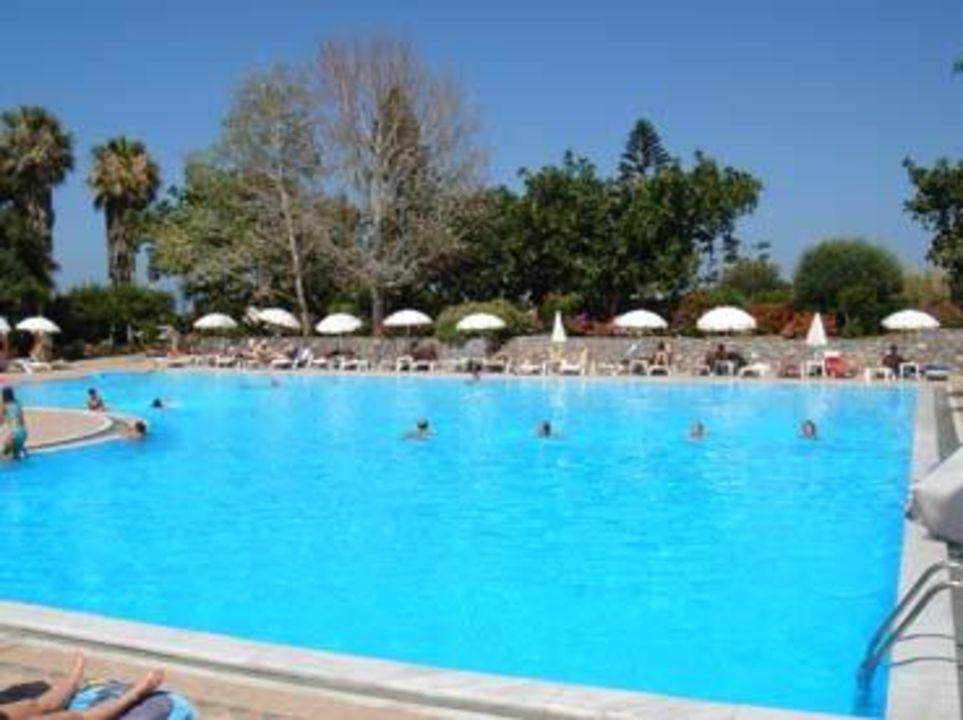 Riesen Pool Hotel King Minos Palace
