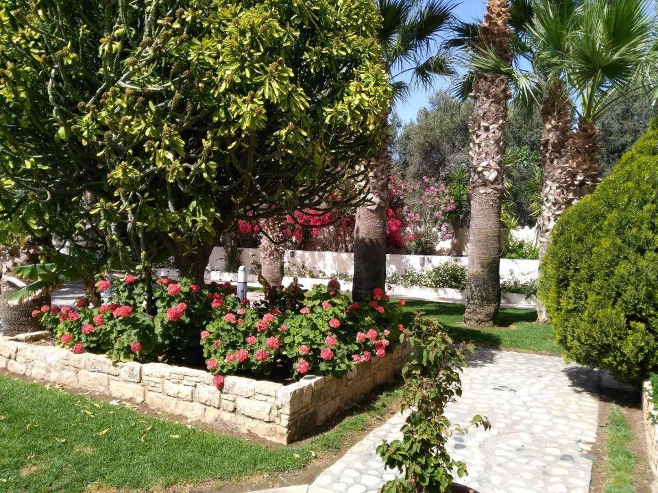 Der üppig blühende Garten Elias Beach Hotel