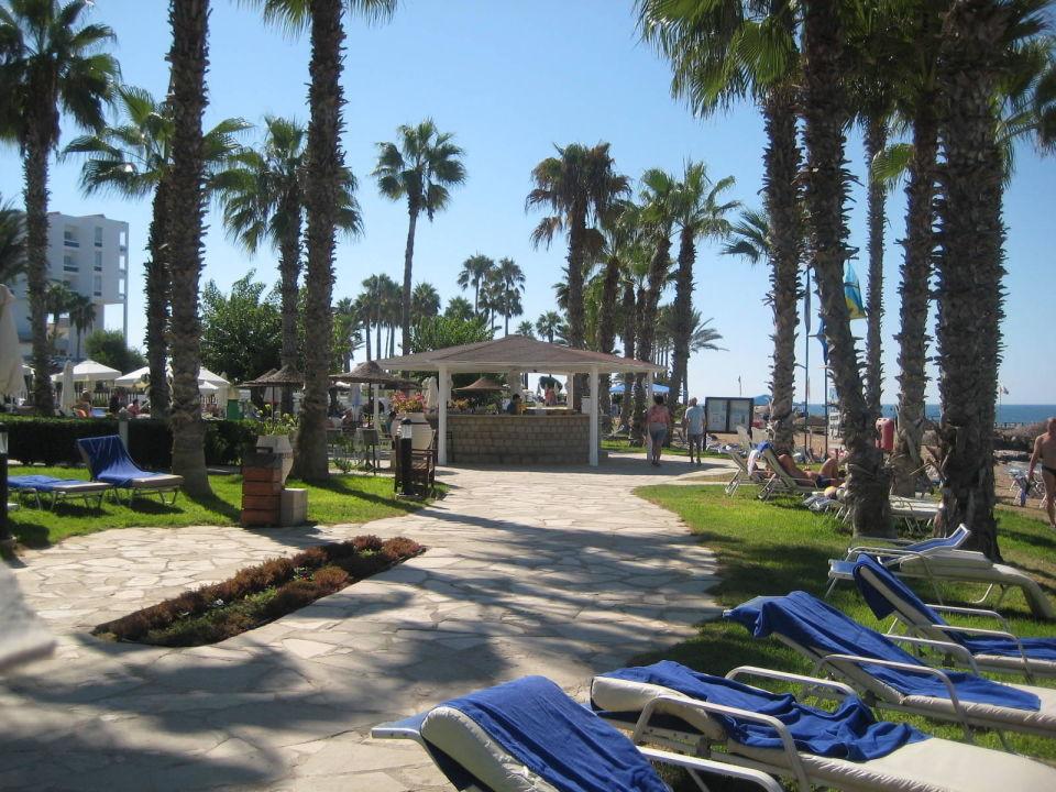Louis Ledra Beach Hotel Paphos