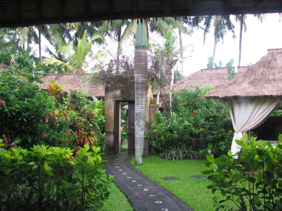 Ausblick von der Terrasse Furama Villas & Spa Ubud