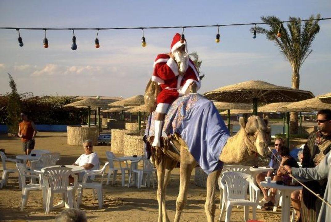 Nikolaus 2003 super! Movie Gate Golden Beach Hurghada
