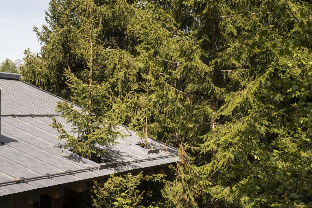 bei uns wohnen sie im einklang mit der natur san luis hotel lodges avelengo hafling. Black Bedroom Furniture Sets. Home Design Ideas