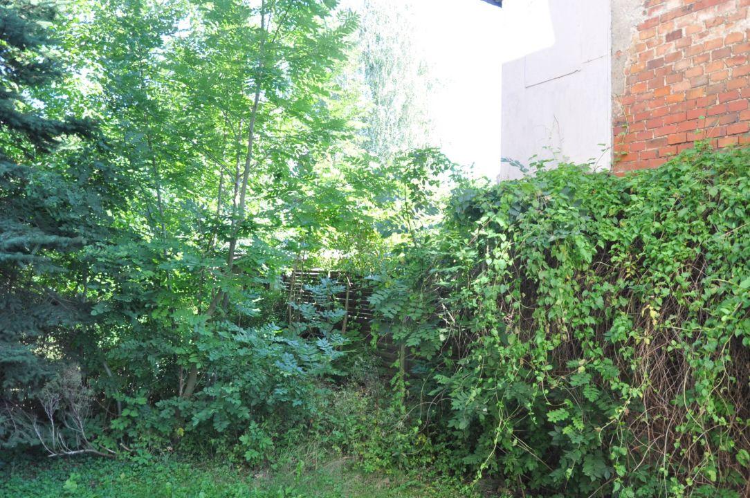Verwilderter Garten Hotel Riedel Zittau Holidaycheck Sachsen