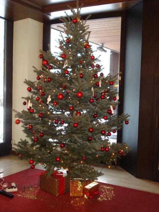 Tannenbaum Fürth.Tannenbaum In Der Lobby Hotel Forsthaus Nürnberg Fürth Fürth