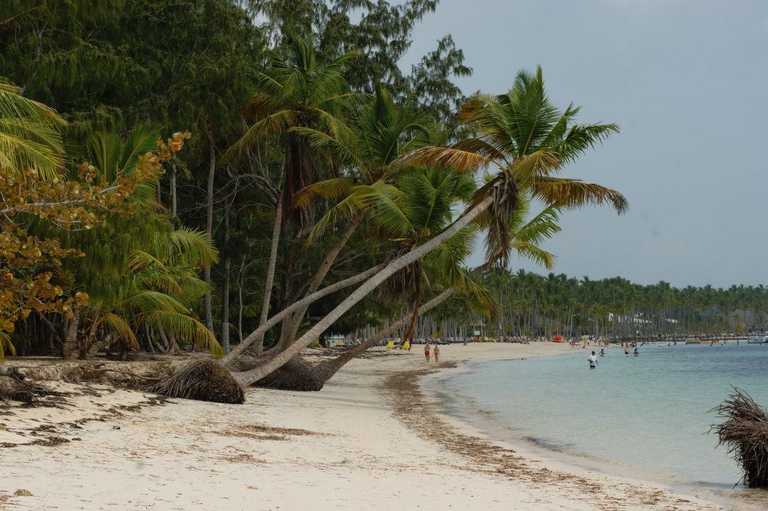 einfach sch n und ruhig melia caribe tropical bavaro holidaycheck dominikanische republik. Black Bedroom Furniture Sets. Home Design Ideas