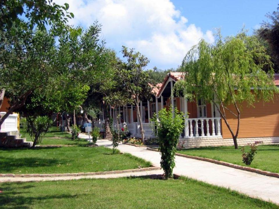 Hotel Hotel Altinkum Bungalows