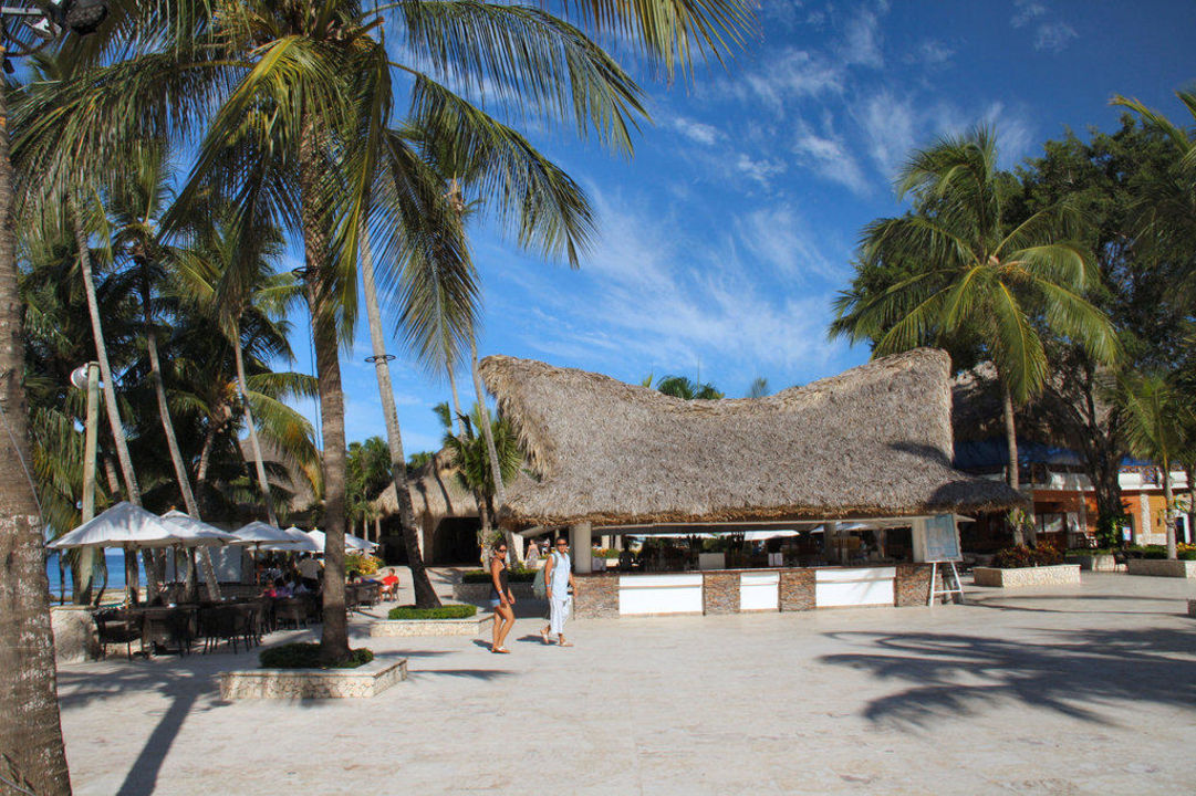 Poolbar Hotel Viva Wyndham Dominicus Beach