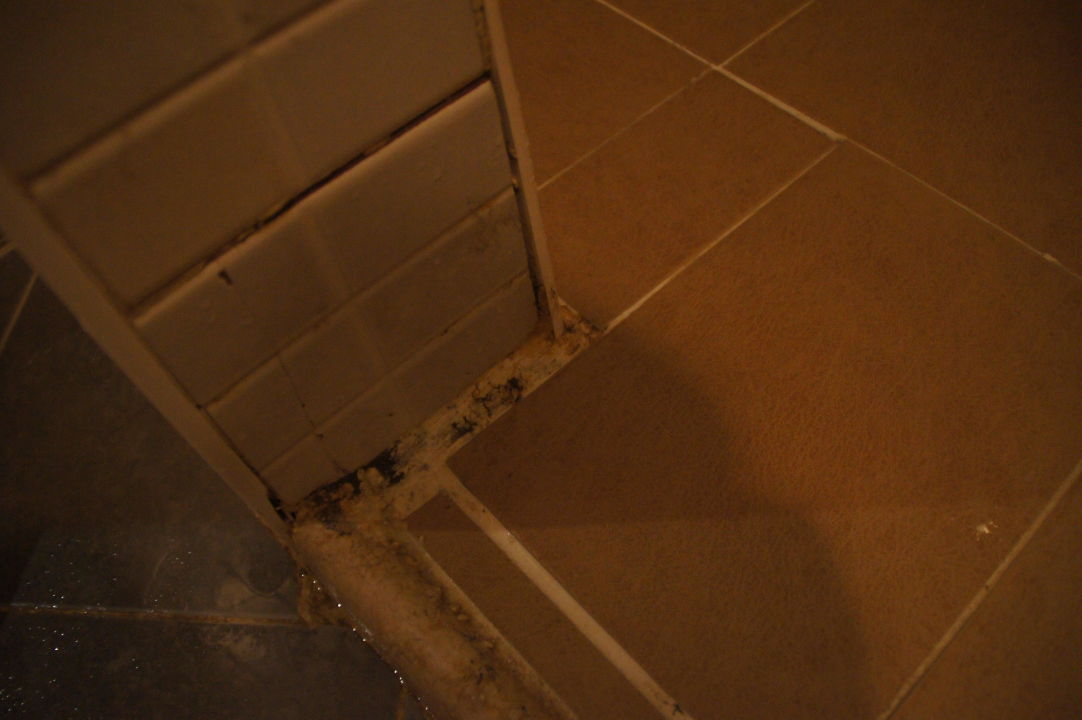 schimmel in der dusche hotel gorgonia beach ab ghu n holidaycheck marsa alam el quseir. Black Bedroom Furniture Sets. Home Design Ideas