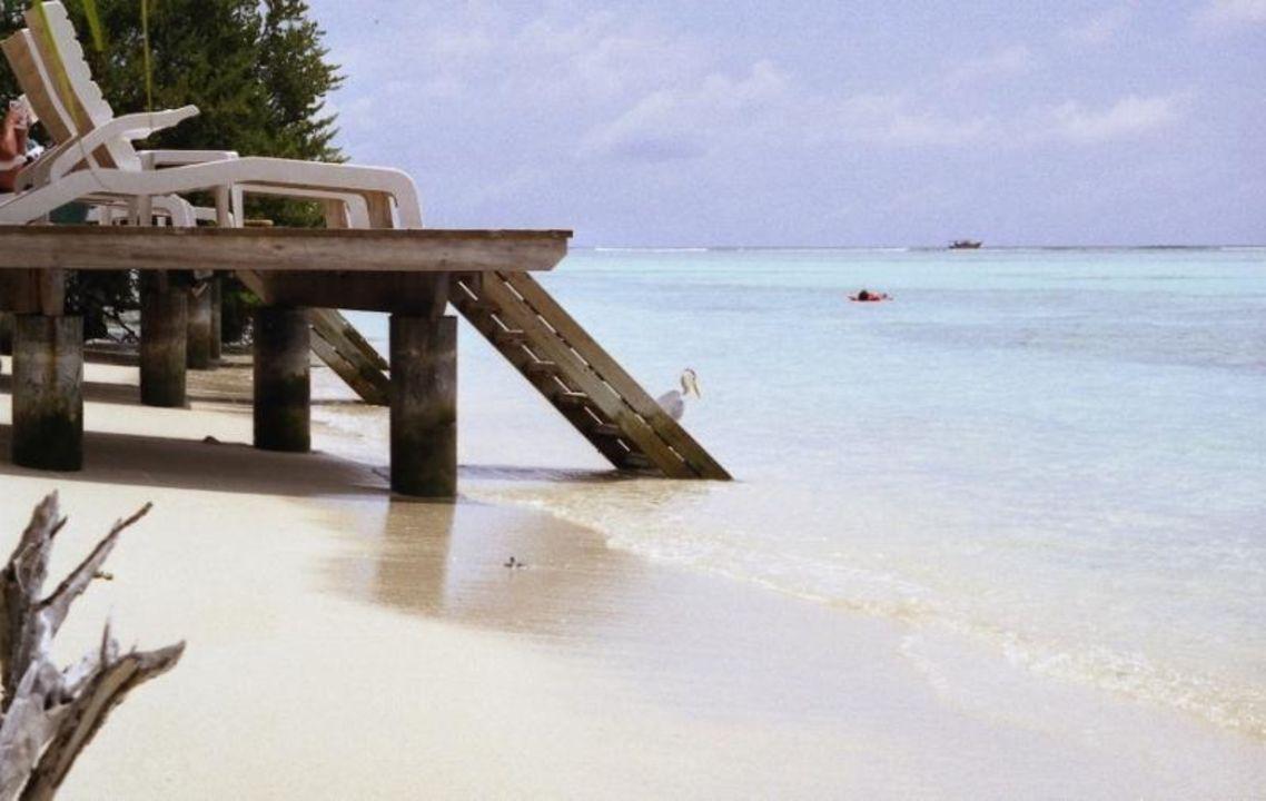 Wasserbungalows Meeru Island Resort & Spa