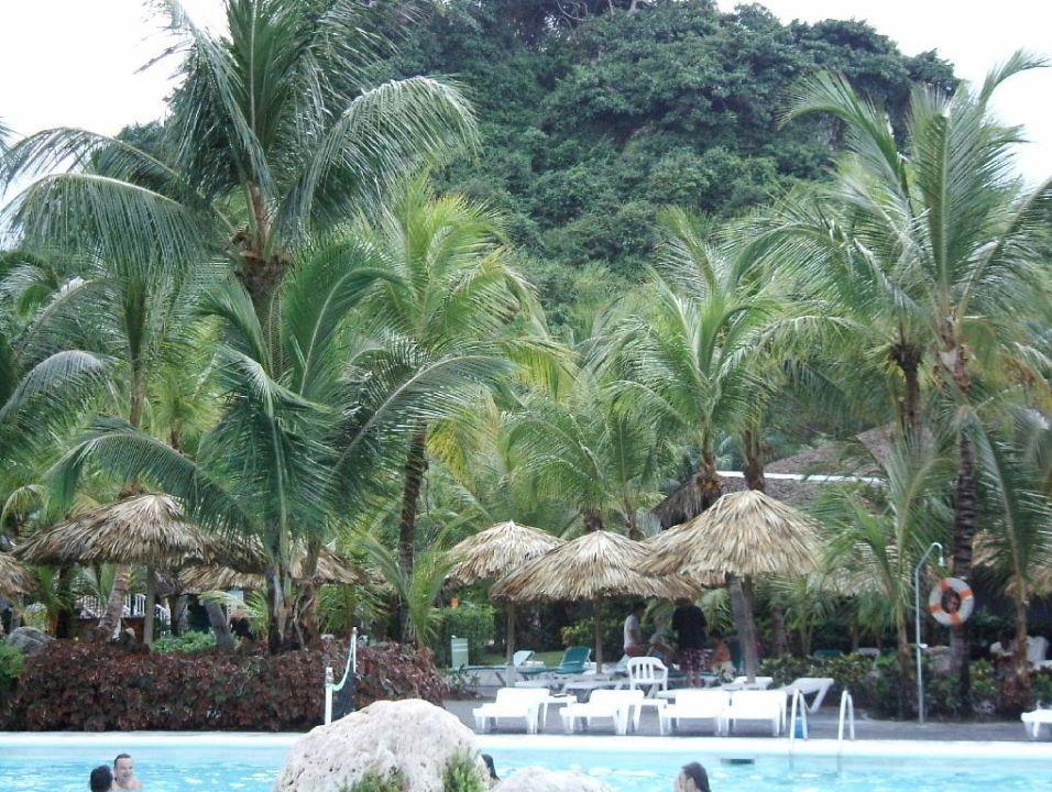 Poolblick Playabachata Resort