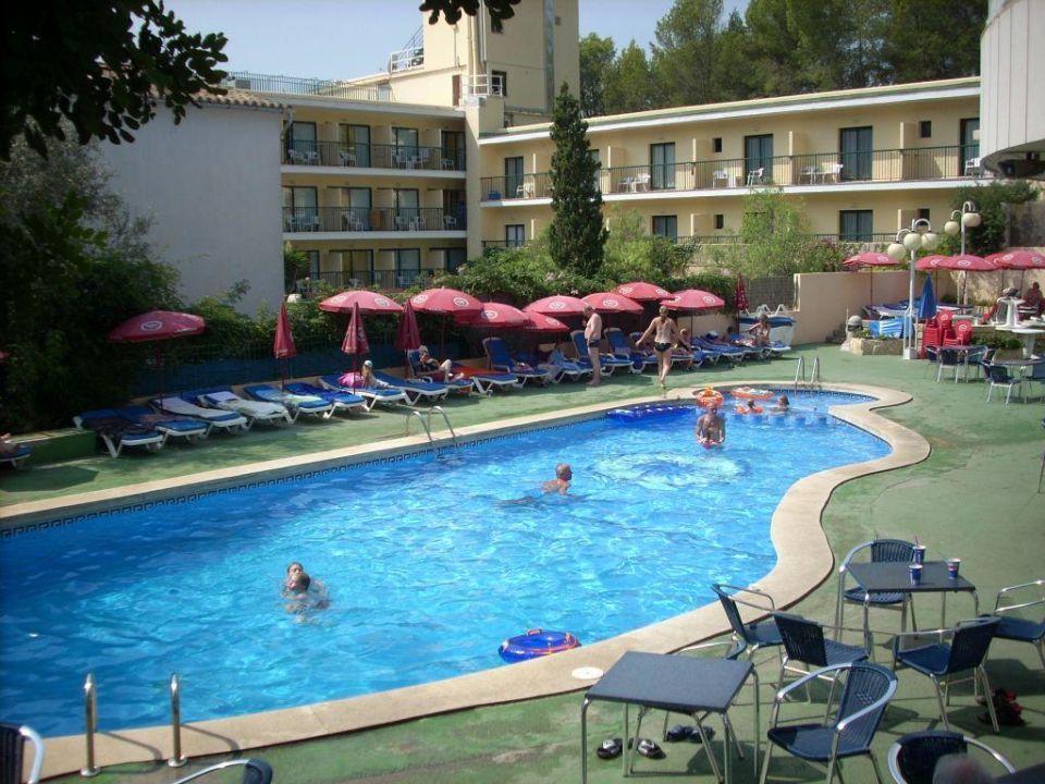 Pool Allsun Hotel Paguera Park Peguera Holidaycheck Mallorca