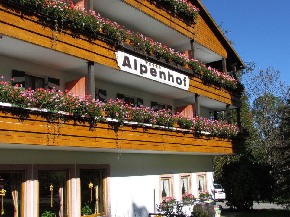 Alpenhof Alm- & Wellnesshotel Alpenhof