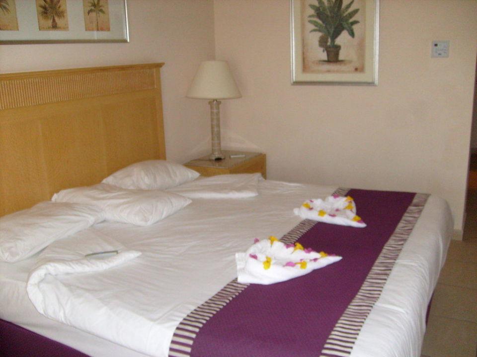 Zimmerfreundlichkeit Hotel JAZ Makadi Star & Spa