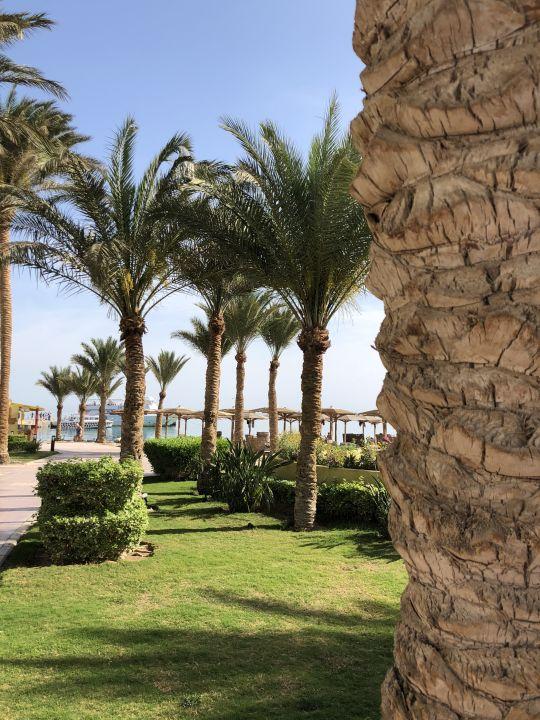 Hurghada Hotel Palm Beach