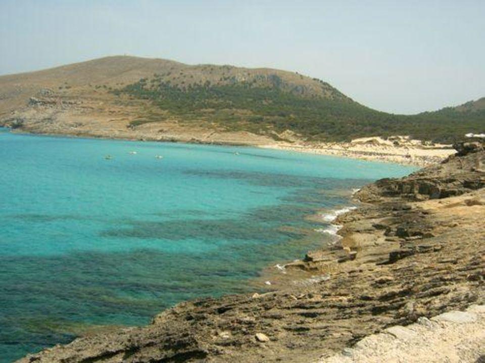 "Blick auf die Bucht ""Cala Mesquida"" Zafiro Cala Mesquida"