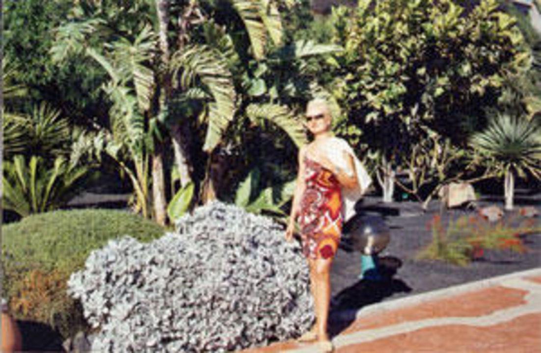 Botanik im Hotel Iberostar Fuerteventura Palace - Adults only