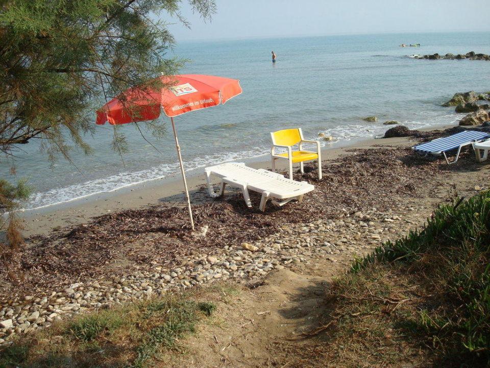 strand mit liegestuhl und sonnenschirm hotel angela beach roda holidaycheck korfu. Black Bedroom Furniture Sets. Home Design Ideas