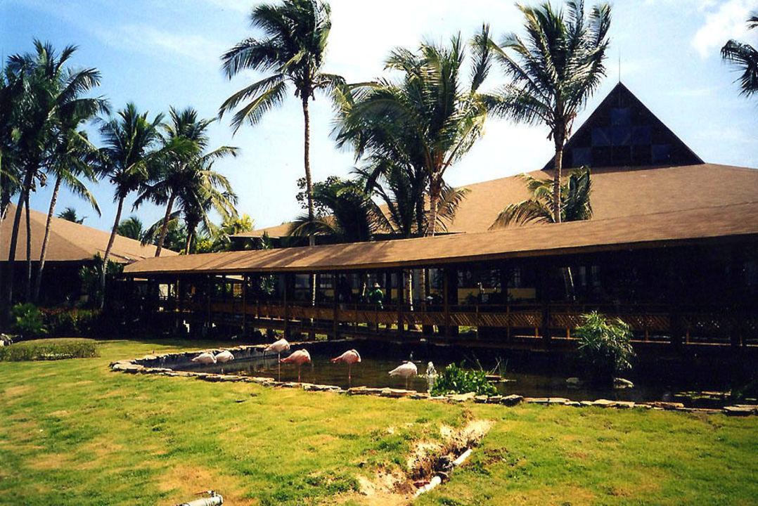 Teich, Flamingo Grand Palladium Bávaro Suites Resort & Spa