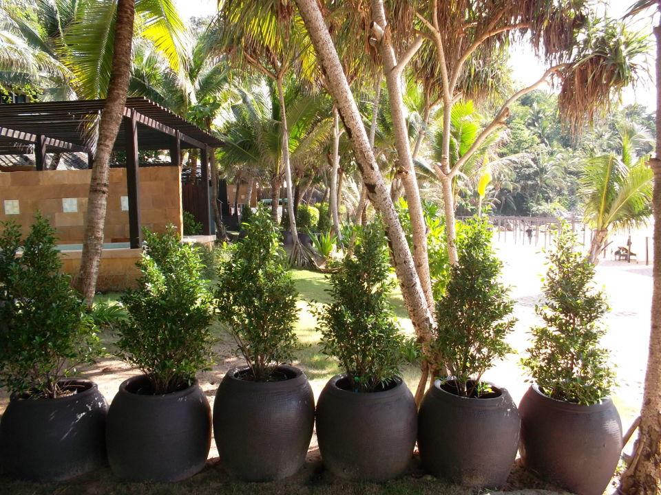 Garten Abtrennung Hotel Andaman White Beach