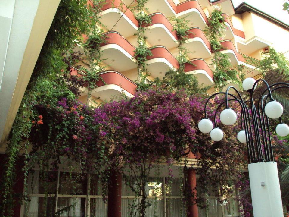 Niczym w Edenie Hotel Holiday Park Resort