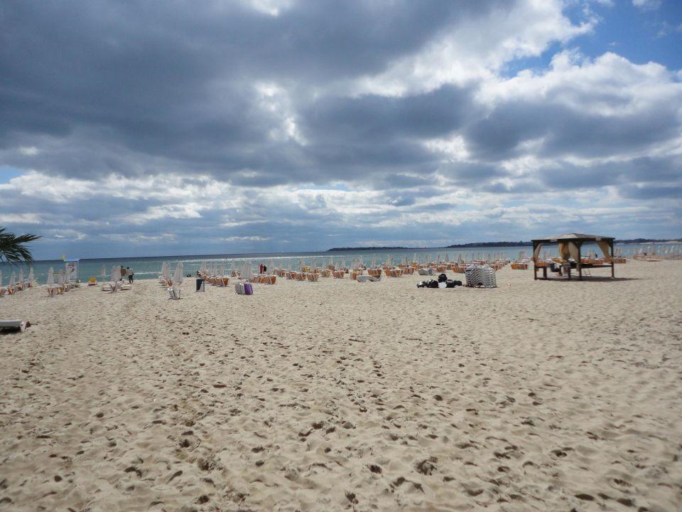 Dit Majestic Beach Resort Holidaycheck