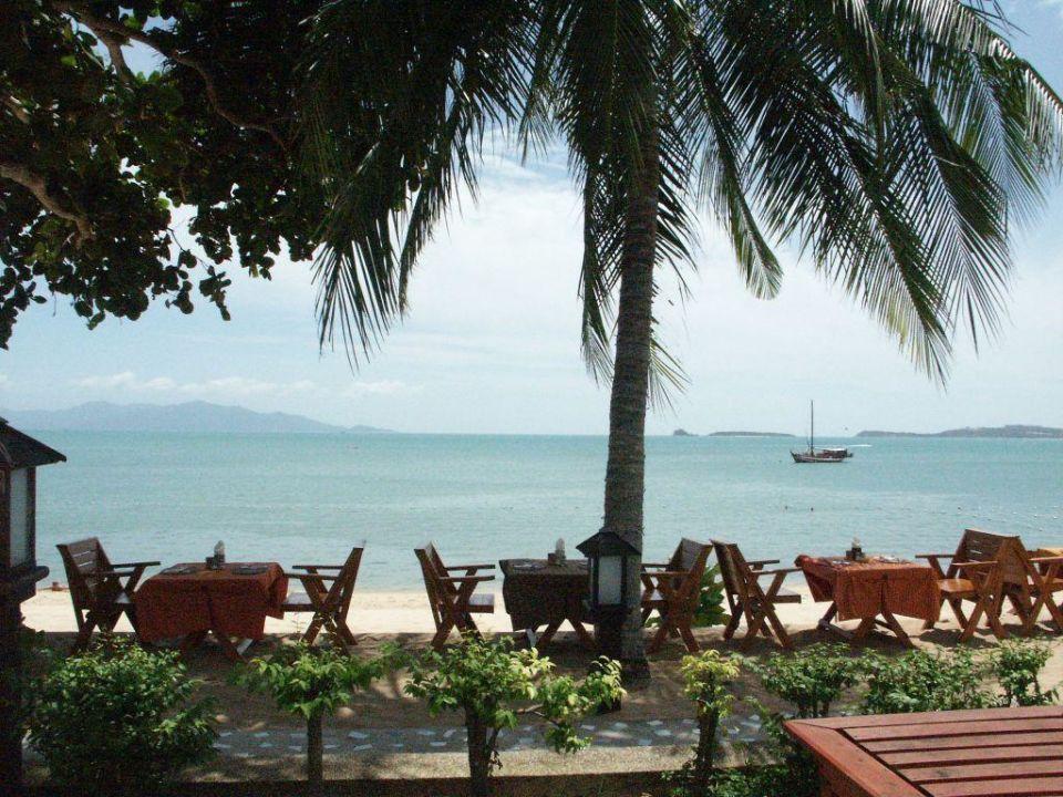 Palmen und Strand Hotel Peace Resort