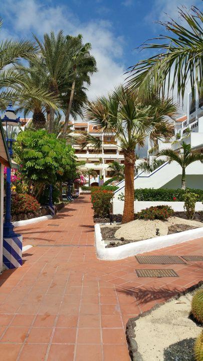 Neben dem pool apartamentos parque santiago 3 playa de las americas holidaycheck - Apartamentos parque santiago ...