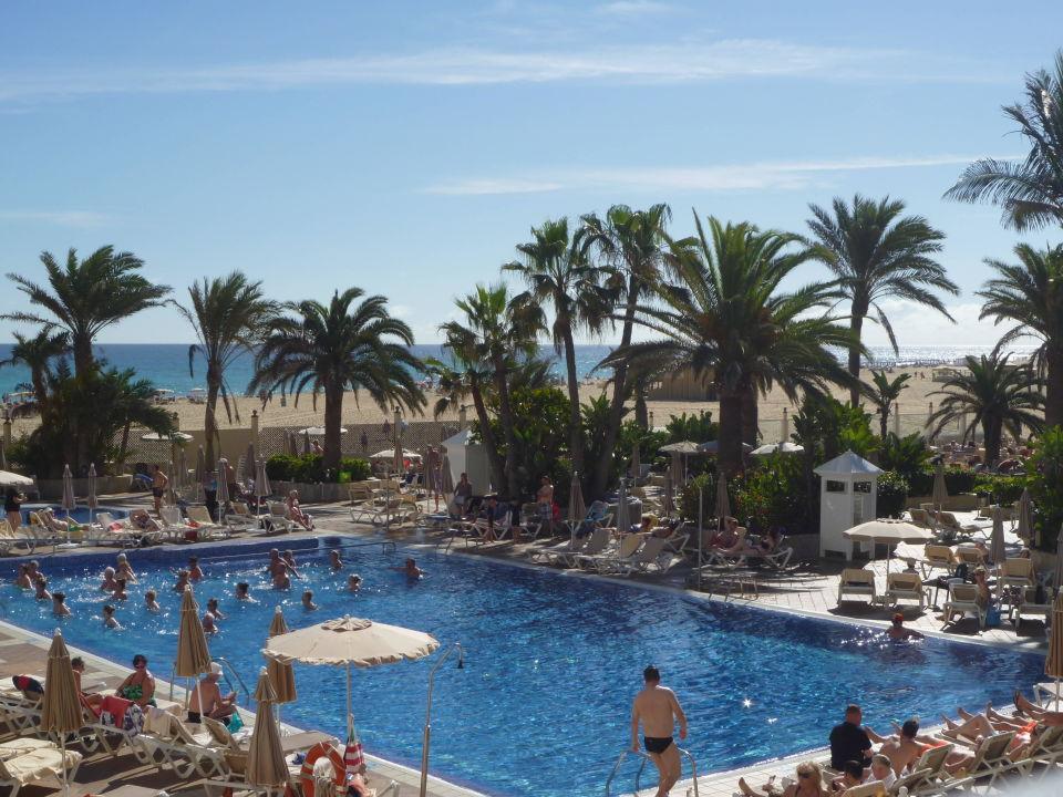 Pool des hotels hotel riu oliva beach village for Riu oliva beach village