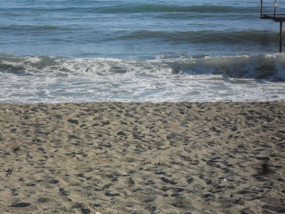 Strand der Anlage Maslinica Hotels & Resorts