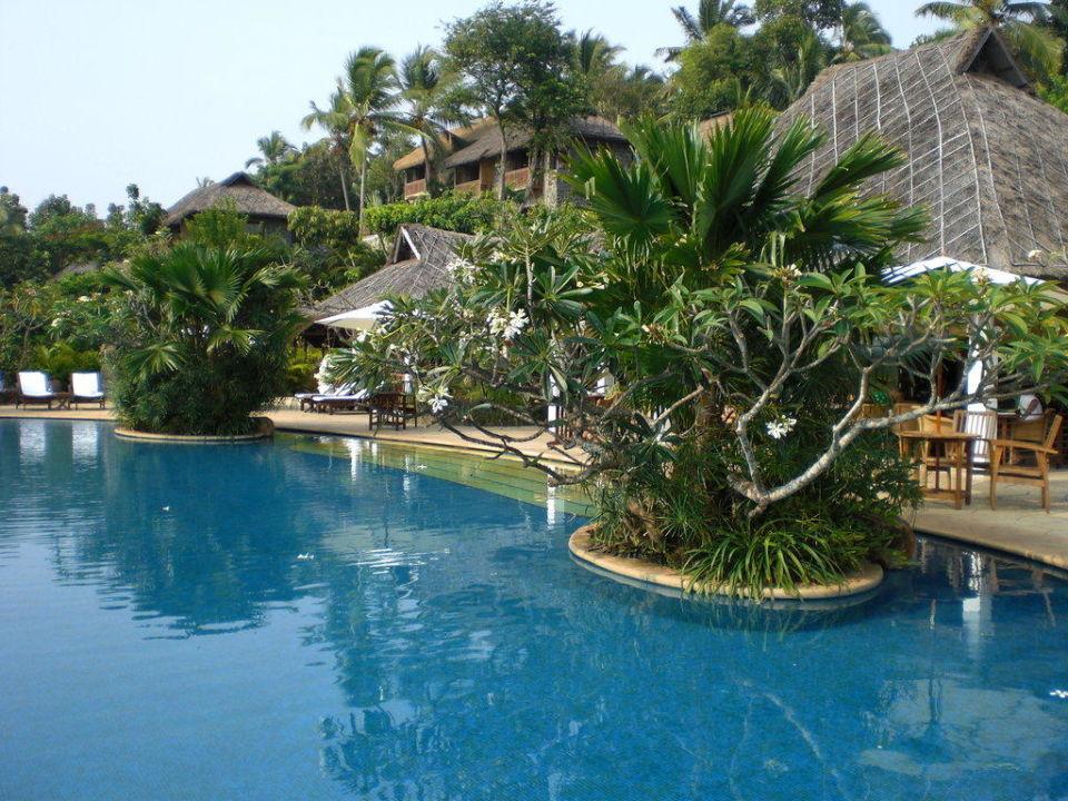 Pool Hotel Vivanta by Taj Kovalam