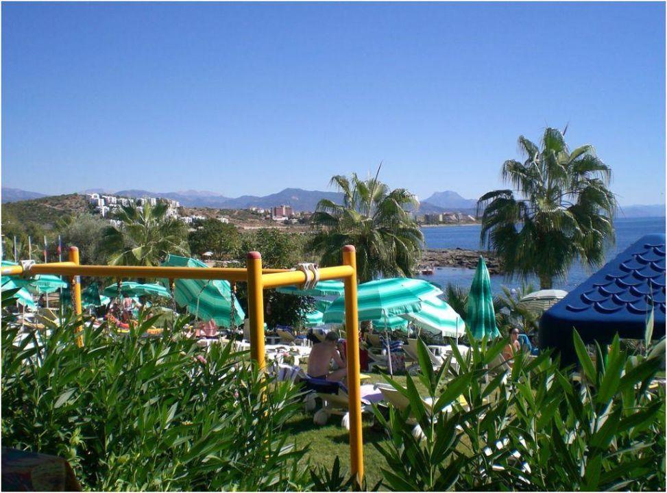 Blick von der Strandbar auf Liegewiese und Meer  Numa Palma Hotel