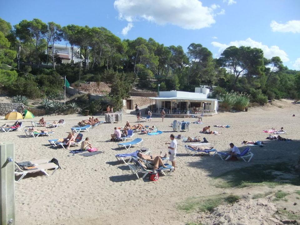 Playa del Gracia Fiesta Hotel Tanit