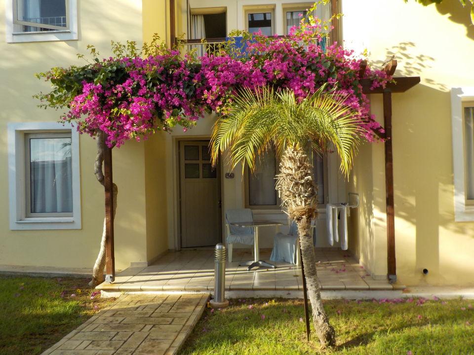 Sonstiges Louis Althea Beach Hotel