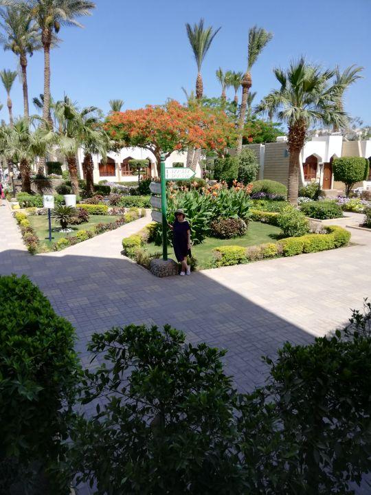 Gartenanlage Regina Swiss Inn Resort & Aqua Park