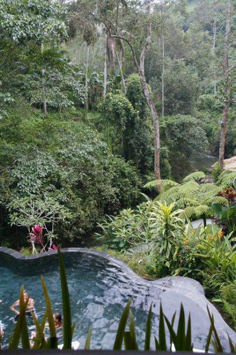 Unterer Pool Maya Ubud Resort & Spa Bali
