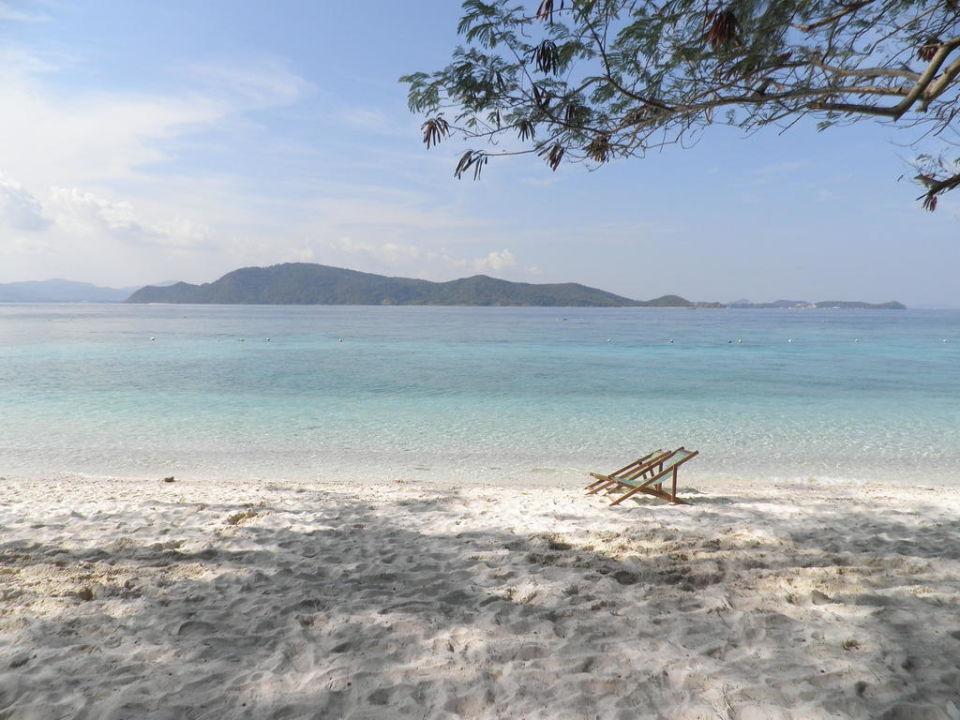 Beach Hotel Coral Island Resort