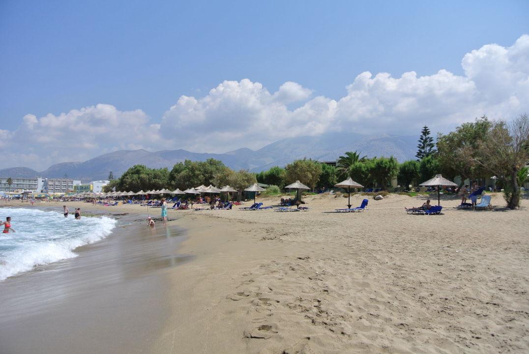 Strand Hotel Cretan Malia Park Malia Holidaycheck Kreta