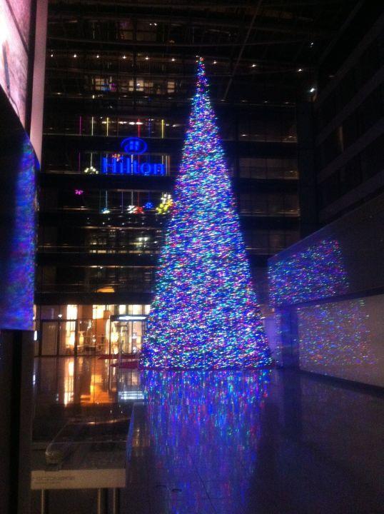 Weihnachtsbaum Frankfurt.Weihnachtsbaum Vor Den Beiden Hilton Hotels Hilton Garden Inn