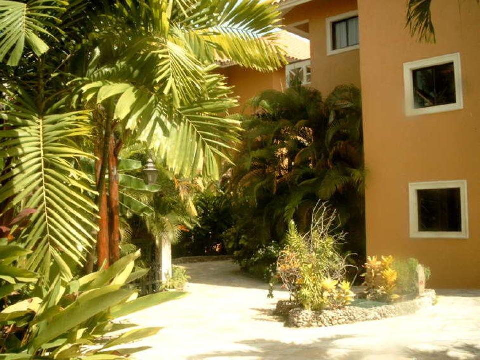Estrella del Mar Cabarete Dom.-Rep._11 Hotel Azzurro Club Estrella  (geschlossen)