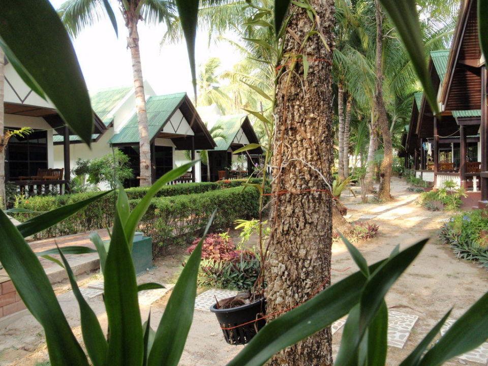 Reihenbungalow Hotel Southern Lanta Resort