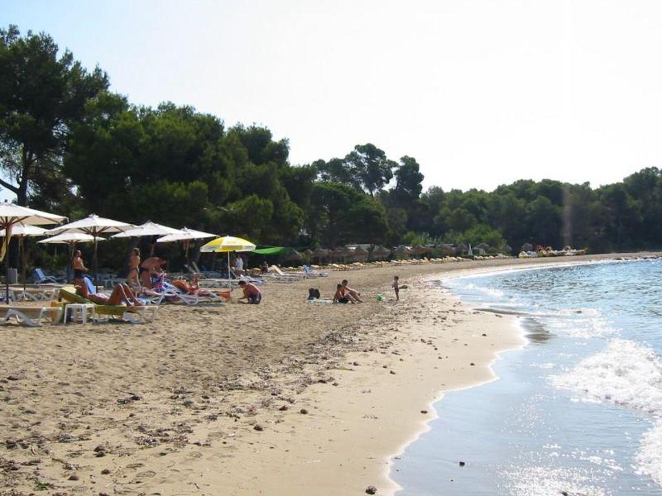 Strand Grupotel Santa Eularia & Spa