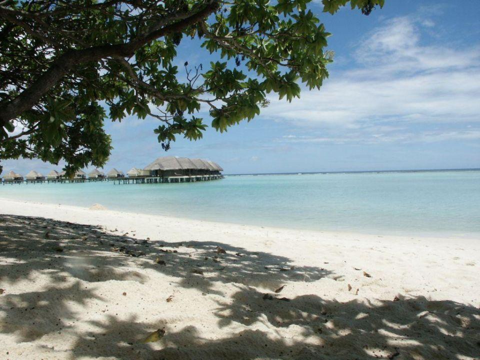 Strand Kanuhura Maldives