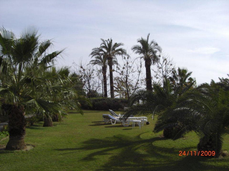 Gartenbereich Arcanus Side Resort