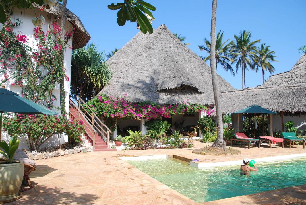 Villa Kiva - Garten mit Pool\
