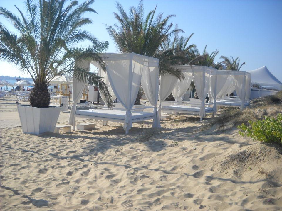 Plaża Hotel Delfin