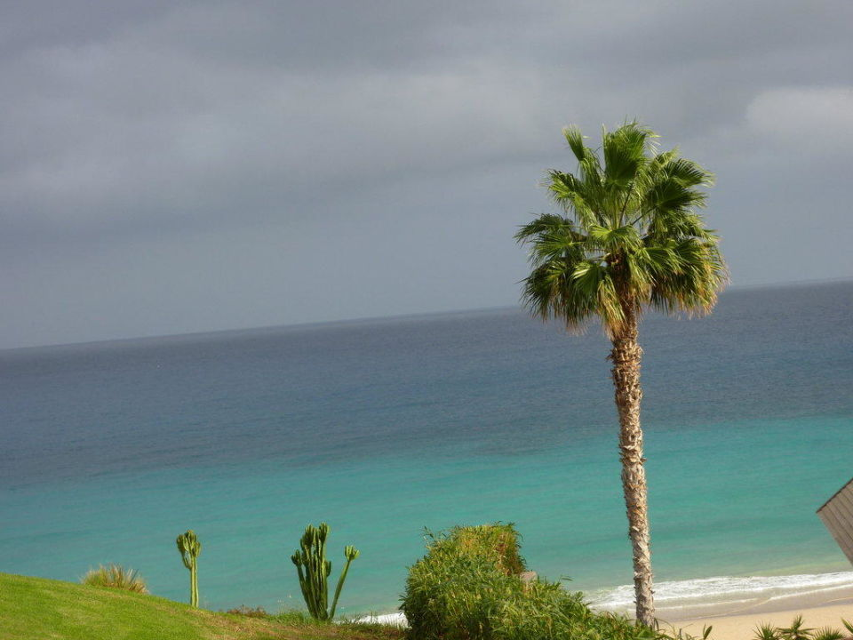 Von der Zimmerterrasse Fuerteventura Princess