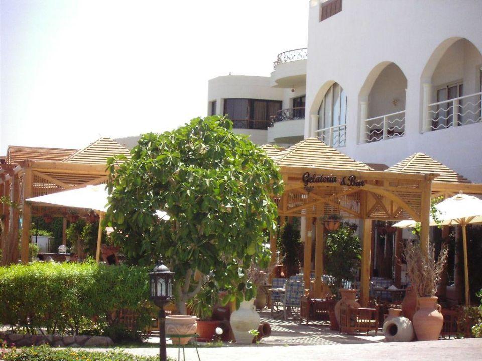 Italian Restauran - Concorde El Salam Concorde El Salam Hotel Sharm el Sheikh