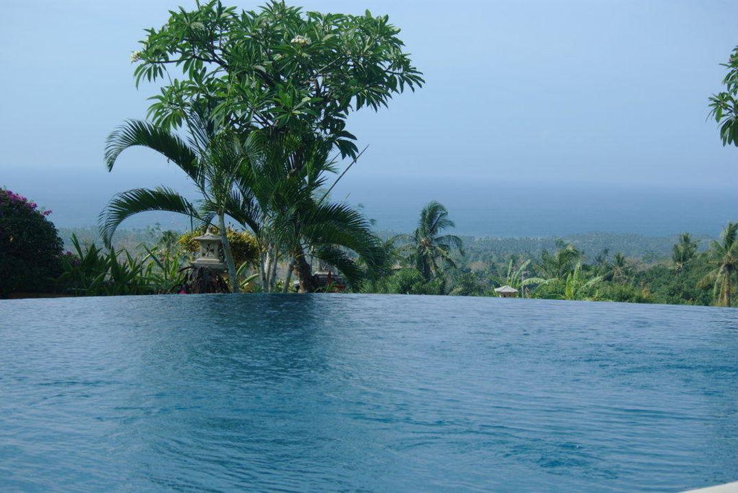 Pool mit Weitblick Hotel Puri Mangga
