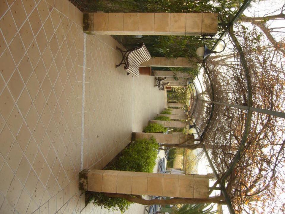 Garten Zafiro Tropic